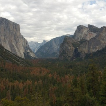 San Francisco, California, Yosemite, Yosemite National Park, Yosemite Falls,, dry, autumn, water, rocks, climb, el capitan, capitan, hiker, tall, high, 1000m, mountain, rock, apple, view,