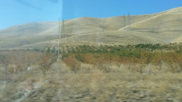 San Francisco, California, freeway, hills, naked, grass, burned,