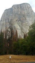 San Francisco, California, Yosemite, Yosemite National Park, Yosemite Falls,, dry, autumn, water, rocks, climb, el capitan, capitan, hiker, tall, high, 1000m, mountain, rock,