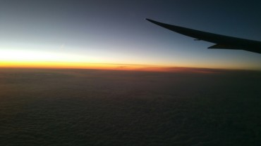 Morning, Wing, flight, dusk,