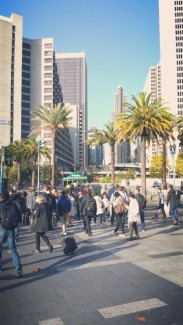 California, San Francisco, downtown, buildings, skyscrapers, people, street, street cape. crowd, palm trees,