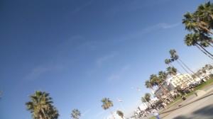 Los Angeles, Santa Monica, tilted, palm trees, summer, heat