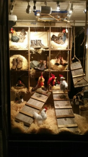 Chicken, Store, Window, window shopping, eggs, chickens, boots, shoes,