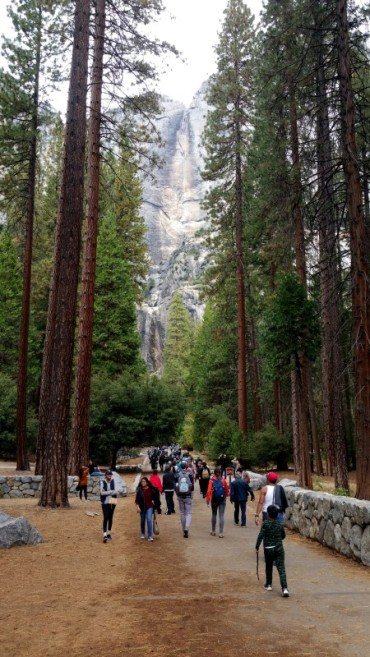 San Francisco, California, Yosemite, Yosemite National Park, Yosemite Falls, Falls, Waterfall, dry, autumn, water,