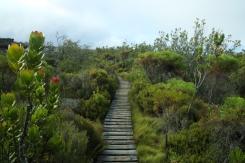 A gardener paradise!