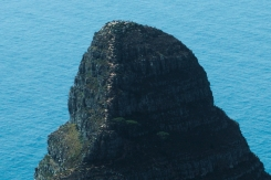 Zoom, Closer look at Lion's Head from Table Mountain, Cape Town, South Africa
