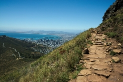 trail to the peak of lions head, cape town, south Africa with a view over the city