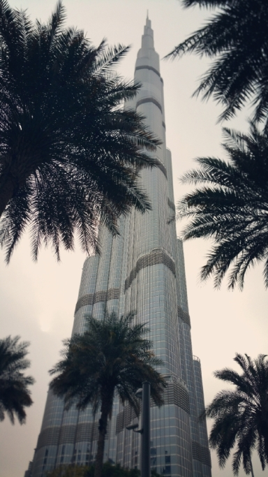 Burj Khalifa behind the palms