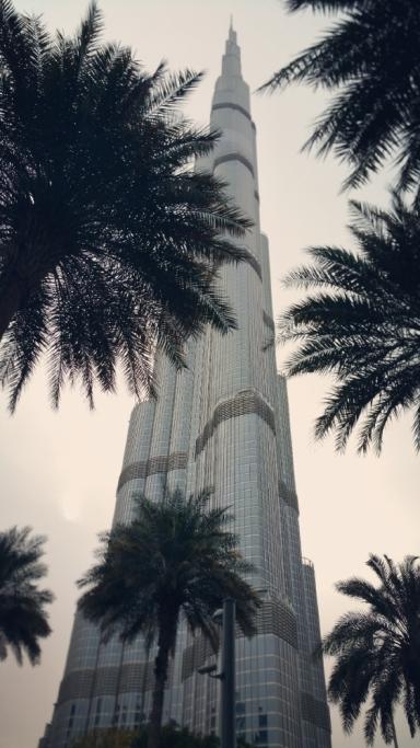 Burj Khalifa behind the palms