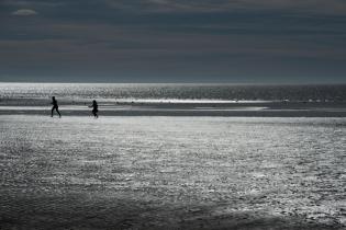 Low tides 2