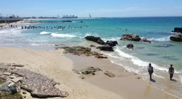 Port Elisabeth 2