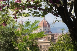 Blooming Florence2