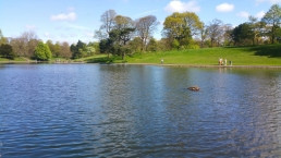 Sefton Lake