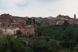 Siena City 2