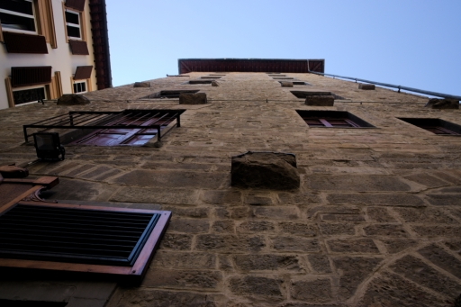 Towers of Florence2
