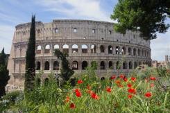 Colosseum daytime-1