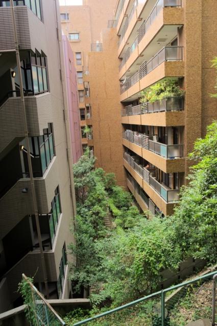 Green canyon Tokyo