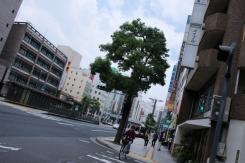 Life in Hiroshima