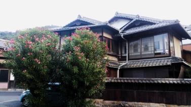 Miyajima local street-1