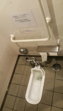 No touch toilet system