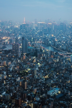 Tokyo from Above dusk 4