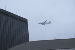ANA plane landing