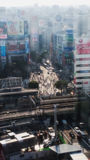 Famous Shibuya Crossing 2