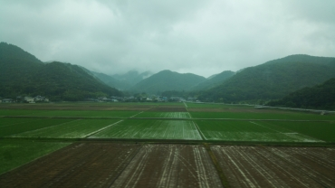 Japan countryside Rice Fields
