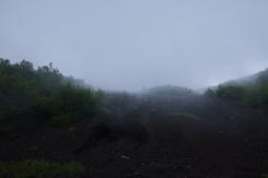 Mystical fog