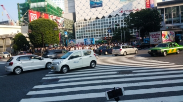 Shibuya Crossing back