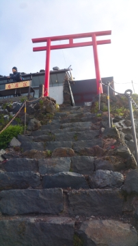 Torii Gate 6