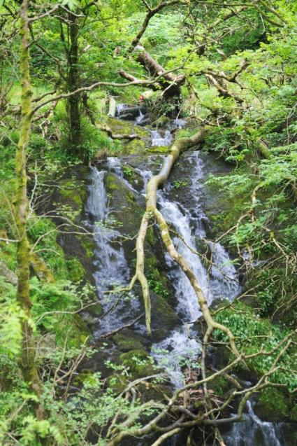 On the way up - Snowdon hidden waterfalls 2