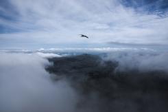 On the way up - Snowdon peak 5