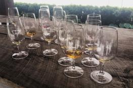 18. Ice wine tasting