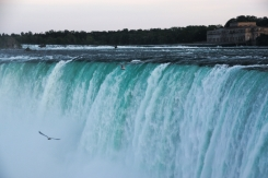 41. Niagara Falls additional 7