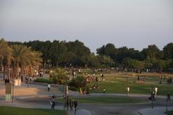 Doha evening comes alive 2