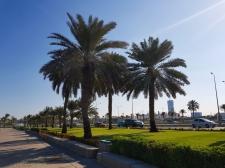 Doha Promenade 2