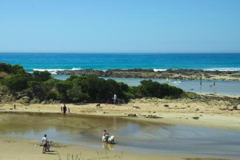 Ocean Road Dog Paradise