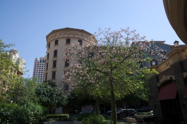 Pearl Qatar 2