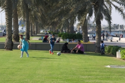 Picnic in Doha 2