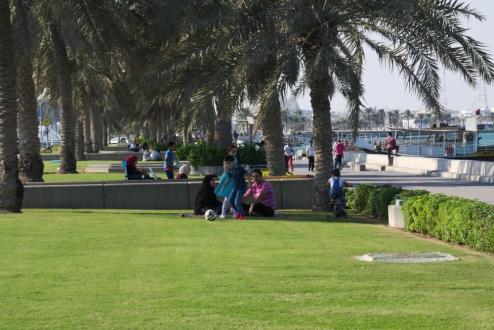 Picnic in Doha