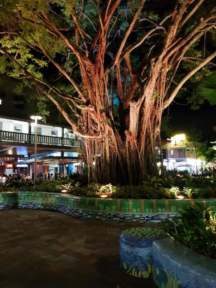 Cairns city centre 10