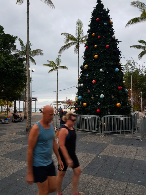 Cairns city centre 6