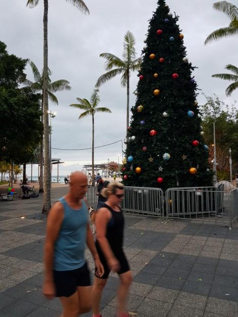 Cairns city centre 6