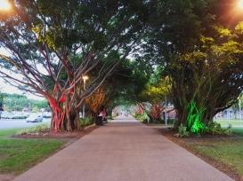 Cairns city centre