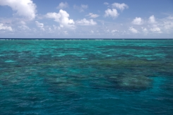 Great Barrier Reef 15