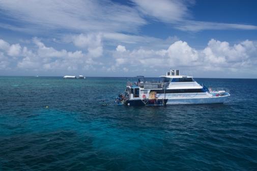 Great Barrier Reef 6