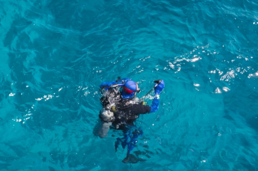 Great Barrier Reef divers 2