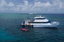Great Barrier Reef Reef Experience