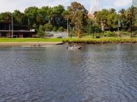 Melbourne City Centre 22